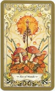 22-mystic-faerie- tarot-linda- ravenscroft-wands-01