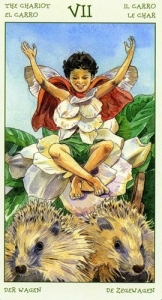 07-the-spirit-of-flowers-tarot-chariot