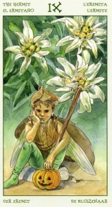 09-the-spirit-of-flowers-tarot-hermit