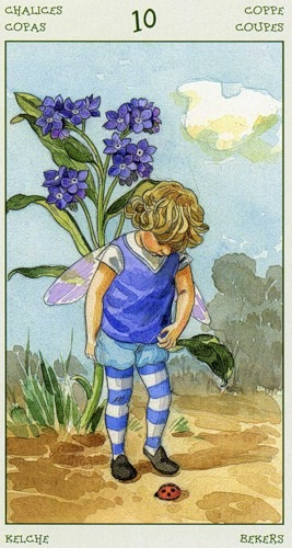 46-spirit-flowers-tarot-chalices-10