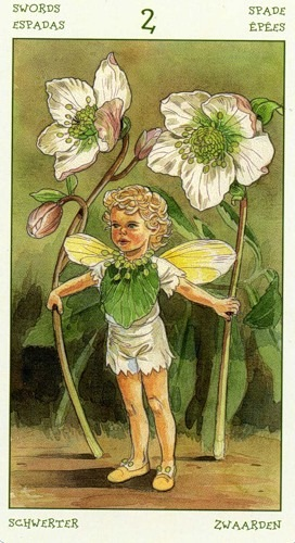 52-spirit-flowers-tarot-swords-02