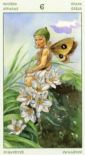 56-spirit-flowers-tarot-swords-06