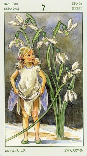 57-spirit-flowers-tarot-swords-07