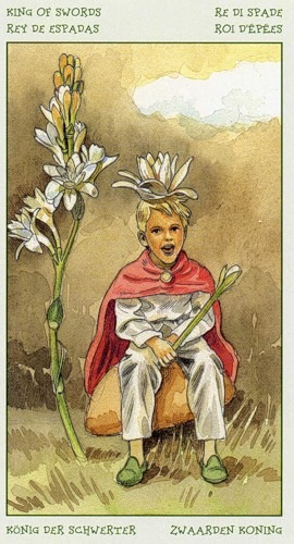 64-spirit-flowers-tarot-swords-14