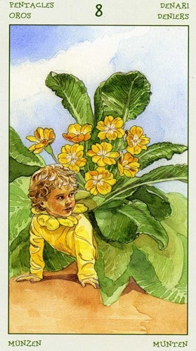 72-spirit-flowers-tarot-pentacles-08