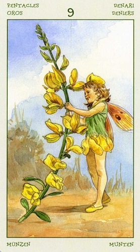 73-spirit-flowers-tarot-pentacles-09