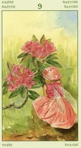 31-spirit-flowers-tarot-wands-09