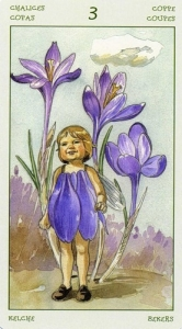 39-spirit-flowers-tarot-chalices-03
