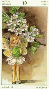 60-spirit-flowers-tarot-swords-10