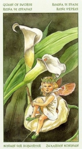 61-spirit-flowers-tarot-swords-11