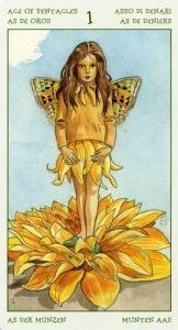 65-spirit-flowers-tarot-pentacles-01