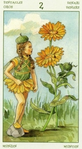 66-spirit-flowers-tarot-pentacles-02