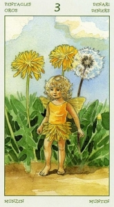 67-spirit-flowers-tarot-pentacles-03