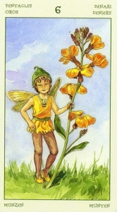 70-spirit-flowers-tarot-pentacles-06