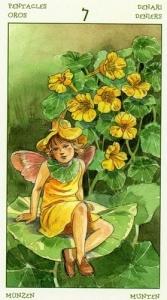 71-spirit-flowers-tarot-pentacles-07