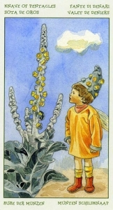 75-spirit-flowers-tarot-pentacles-11