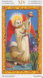 14-tarot-white-cats