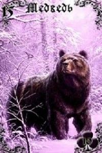 15_medved_lilovie_sumerki