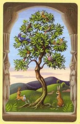 Дерево Ленорман значение