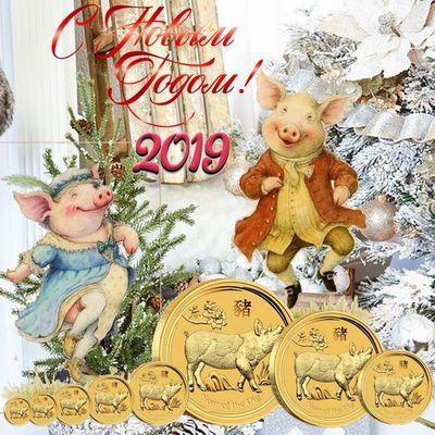 Новый год 2019 год Свиньи,что ждет в год Свиньи,гадания,предсказания
