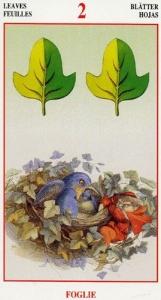 51-fairy-tarot-ant-lupatelli-foglie-02