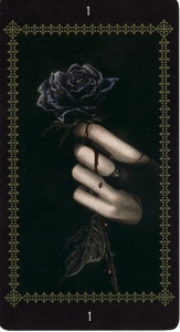50-favole-tarot-zvety-tuz