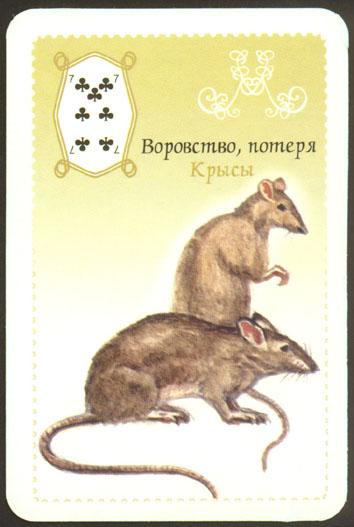 ультрафиолете (неоновые) женщина крыса в сочетании с рыбами сталкеры