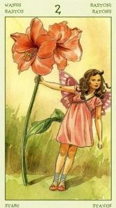 24-spirit-flowers-tarot-wands-02
