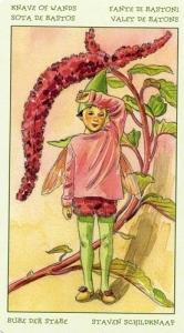 33-spirit-flowers-tarot-wands-11