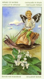 62-spirit-flowers-tarot-swords-12