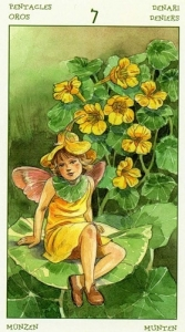 71-spirit-flowers-tarot-pentacles-07