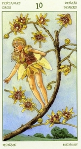 74-spirit-flowers-tarot-pentacles-10