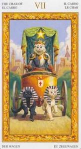 07-tarot-white-cats