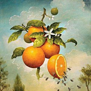Сонник онлайн апельсины, во сне видеть апельсины, к чему снится апельсин